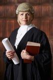 Ritratto del riassunto e del libro femminili di In Court Holding dell'avvocato fotografie stock