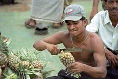 Ritratto del venditore dell'ananas in porto Dacca Bangladesh Immagine Stock Libera da Diritti
