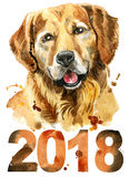 Ritratto dell'acquerello del golden retriever con l'anno 2018 Immagine Stock