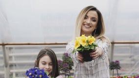 Ritratto dell'adulto e delle ragazze sorridenti che allungano i vasi da fiori alla macchina fotografica stock footage