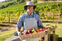 Ritratto dell'agricoltore felice che tiene un canestro degli ortaggi freschi Fotografia Stock