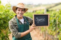 Ritratto dell'agricoltore sorridente che tiene un segno organico Immagini Stock