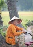 Ritratto dell'agricoltore vietnamita che lavora al riso Fotografia Stock