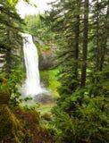 Ritratto dell'Oregon Immagine Stock