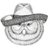 Ritratto dell'ovest selvaggio d'uso dell'illustrazione messicana del partito di festa del Messico del sombrero dell'animale selva royalty illustrazione gratis