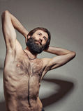 Ritratto dell'uomo degli Yogi Immagini Stock