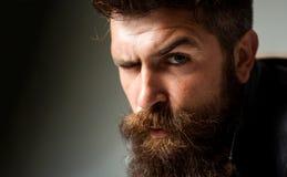 Ritratto dell'uomo del primo piano Fronte dell'uomo Uomo barbuto bello Uomo di sforzo o triste hipster fotografie stock libere da diritti