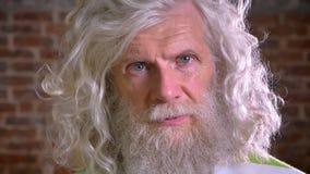 Ritratto dell'uomo senior che esamina primo piano la macchina fotografica con la barba impressionante lunga ed i capelli bianchi, archivi video