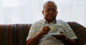 Ritratto dell'uomo senior che mangia caffè sul sofà 4k archivi video