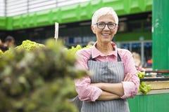 Ritratto della condizione senior della donna al mercato verde immagine stock
