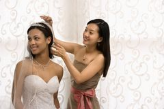 Ritratto della damigella d'onore e della sposa. Immagine Stock