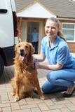 Ritratto della donna con Van Running Dog Walking Service Fotografie Stock Libere da Diritti