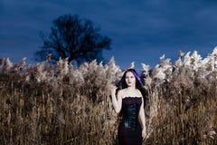 Ritratto della donna gotica in un'alta, erba asciutta Immagini Stock Libere da Diritti