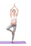 Ritratto della donna incinta che fa yoga Immagine Stock Libera da Diritti