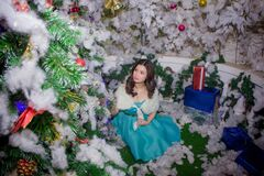 Ritratto della donna nelle decorazioni di Natale Fotografie Stock Libere da Diritti
