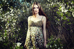 Ritratto della donna romantica in un giardino di estate Immagini Stock Libere da Diritti