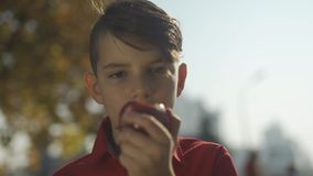 Ritratto della fine della mela di cibo del ragazzino su Il bambino gode della frutta nel parco video d archivio