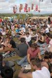 Ritratto della folla di Bestival Immagine Stock