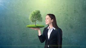 Ritratto della giovane donna che tiene albero verde sulla palma aperta della mano, sopra il fondo isolato dello studio Affare, co Immagini Stock