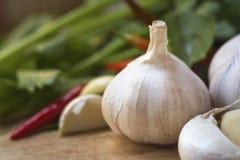 Ritratto della lampadina dell'aglio in cucina Fotografia Stock Libera da Diritti