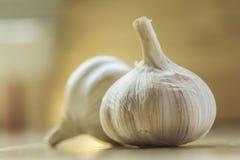 Ritratto della lampadina dell'aglio in cucina Immagini Stock