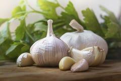 Ritratto della lampadina dell'aglio in cucina Fotografie Stock Libere da Diritti