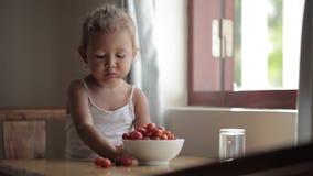 Ritratto della neonata sveglia che mangia pomodoro ciliegia rosso stock footage