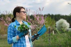 Ritratto della primavera della donna matura in giardino con gli strumenti, cespugli di fragola fotografia stock libera da diritti