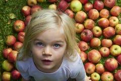 Ritratto della ragazza bionda del bambino con il fondo delle mele fotografia stock libera da diritti