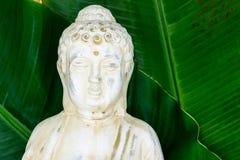 Ritratto della statua di Buddha con le foglie verdi fresche della banana nella superficie del fondo con spazio libero fotografia stock