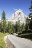 Ritratto delle alpi italiane Immagine Stock Libera da Diritti