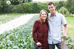 Ritratto delle coppie che lavorano nel campo organico dell'azienda agricola Immagine Stock
