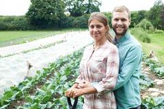 Ritratto delle coppie che lavorano nel campo organico dell'azienda agricola Fotografia Stock Libera da Diritti
