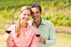 Ritratto delle coppie felici che tengono i bicchieri di vino Fotografia Stock Libera da Diritti