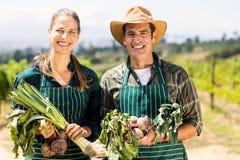Ritratto delle coppie felici dell'agricoltore che tengono gli ortaggi freschi Fotografia Stock