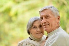Ritratto delle coppie maggiori Fotografie Stock Libere da Diritti