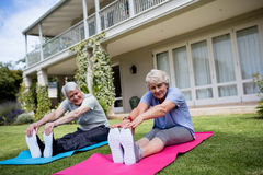 Ritratto delle coppie senior che eseguono allungando esercizio sulla stuoia di esercizio Fotografie Stock