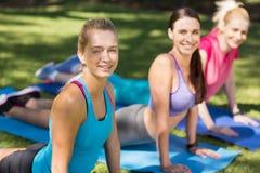 Ritratto delle giovani donne che fanno yoga Fotografia Stock Libera da Diritti