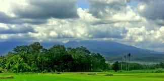 Ritratto delle isole dell'Indonesia fotografie stock libere da diritti