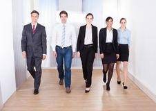 Ritratto delle persone di affari felici Fotografia Stock