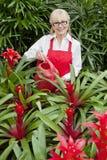 Ritratto delle piante di innaffiatura felici della donna in giardino botanico Fotografie Stock