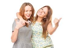 Ritratto di abbraccio allegro degli amici Fotografia Stock Libera da Diritti