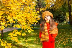 Ritratto di autunno di bello bambino kazako e asiatico Bambina felice con le foglie nel parco nella caduta fotografia stock libera da diritti