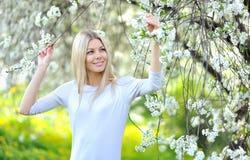 Ritratto di bella donna nell'albero di fioritura della molla Fotografia Stock