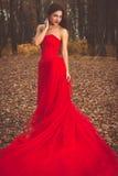 Ritratto di bella giovane donna in un vestito rosso Fotografie Stock