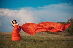 Ritratto di bella giovane donna in un vestito rosso su un fondo del cielo e dell'erba di estate Immagine Stock Libera da Diritti
