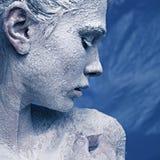 Ritratto di bella ragazza nel gelo immagini stock