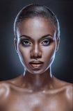 Ritratto di bellezza Fotografie Stock Libere da Diritti