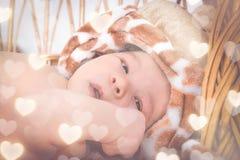 Ritratto di bello ragazzo che si trova nel canestro di vimini Fotografia Stock Libera da Diritti