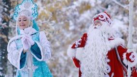 Ritratto di camminata nubile del padre Frost e della neve nella foresta e di godere del paesaggio stock footage